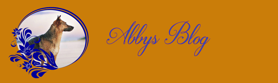 Abbys Blog