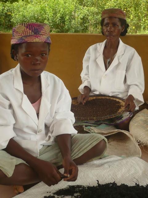 http://www.reggioterzomondo.org/index.php?page=Progetti&subpage=Madagascar&subsubpage=dettaglio_progetti&id=00026&prog=La dignità ha gli aromi delle spezie