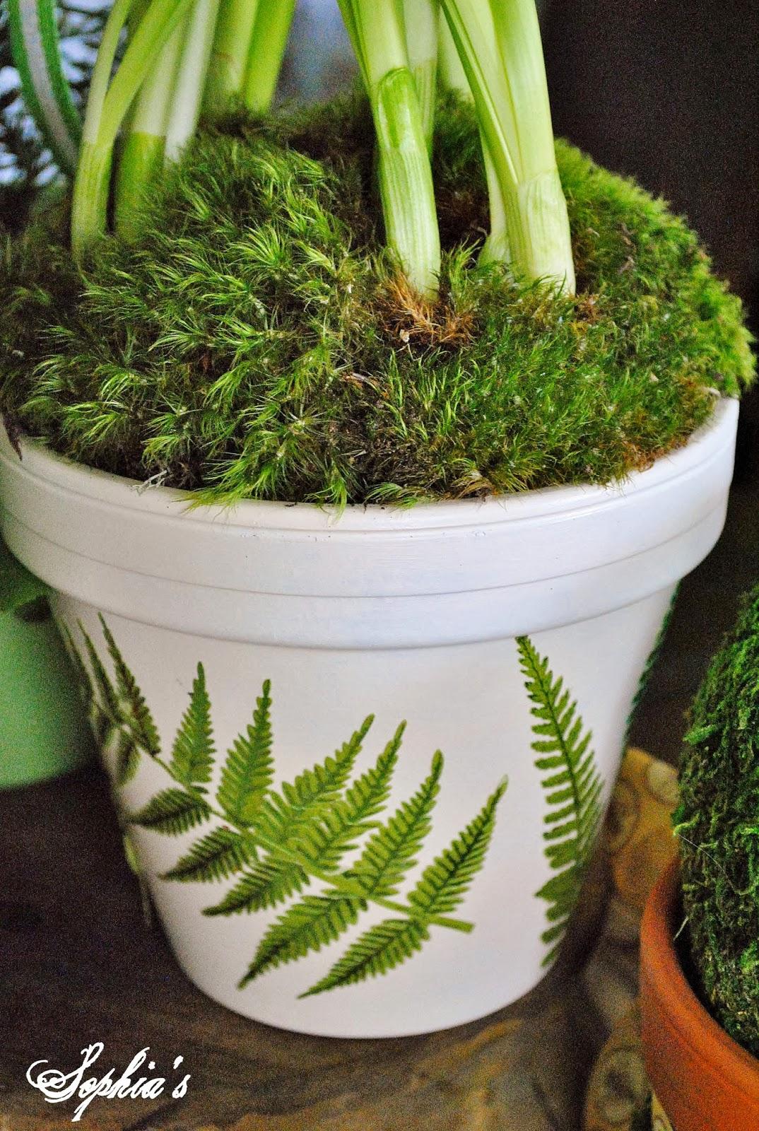 sophia's: diy spring clay pots & michaels pinterest party