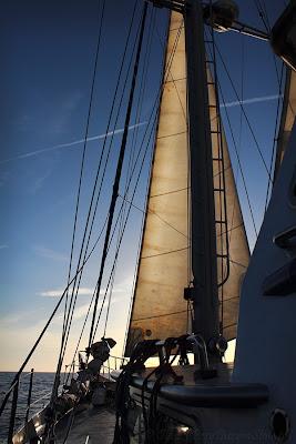 Przy Sużym Stole: Gedania, Tall Ships Races 2013, TSRSzczecin