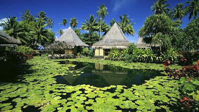 tahiti bora bora paradise luxury accomodation best hotels holiday