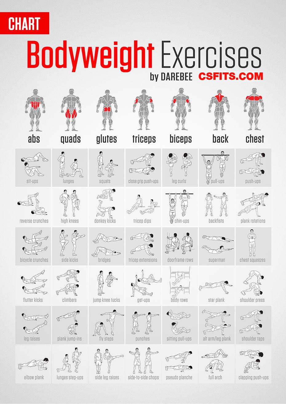 Parunchai Kochseni No.8 Bodyweight-exercises-chart%2Bcopy