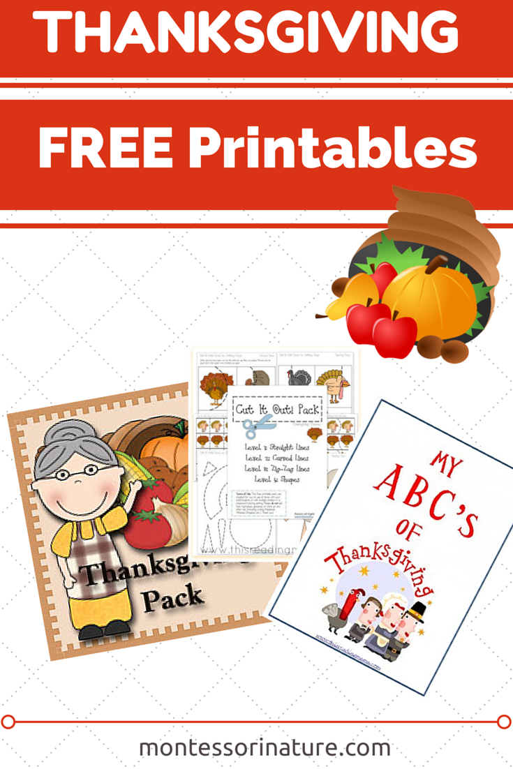 in this post i would like to feature free thanksgiving preschool and toddler printables and downloads we used many of these in our montessori classroom