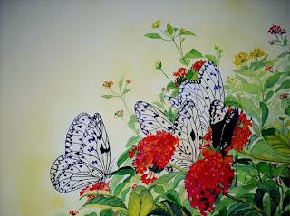 Cuadros Delicadas Mariposas Coloridas
