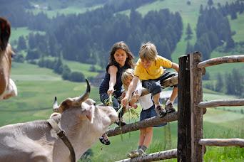 Gewinnt eine tolle Familienreise nach Südtirol