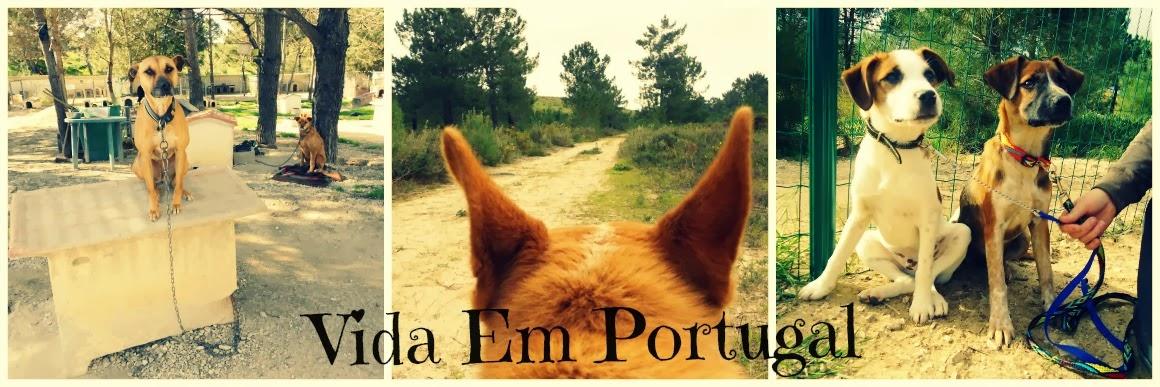 Vida em Portugal
