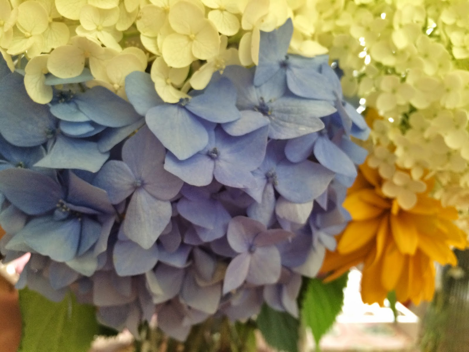 Wide Margins Birthday Flower Love