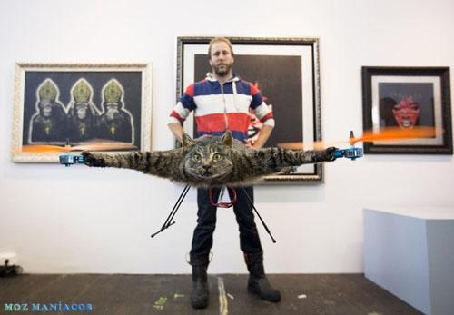 Alguns Malucos Transformaram Gato Morto em Helicóptero