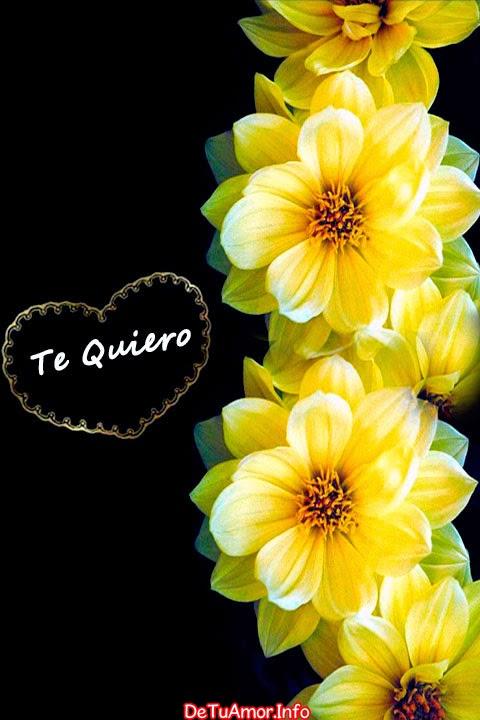 Imágen de amor para fondo de pantalla de celular movil de flores