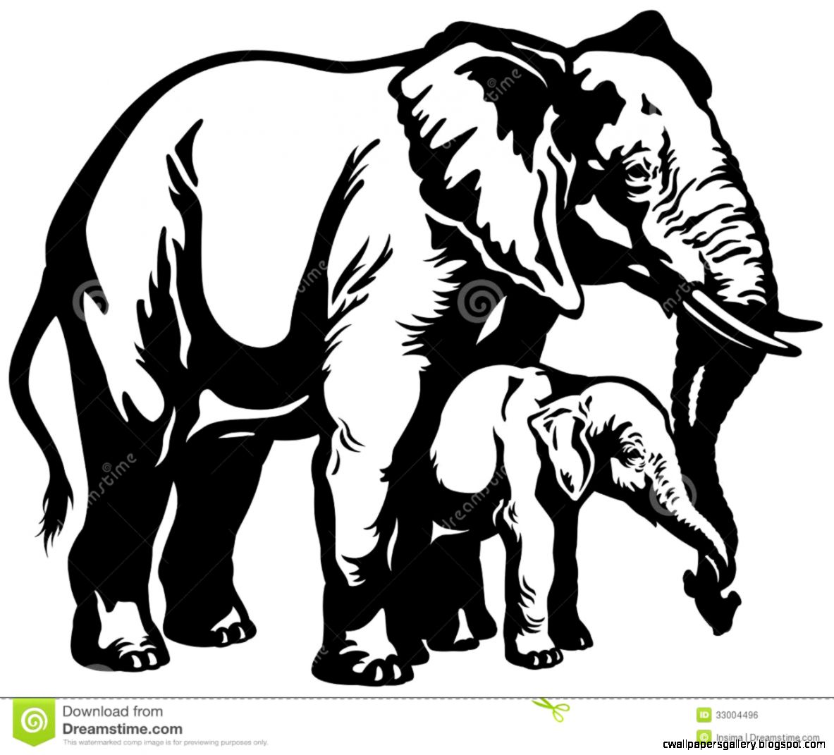 рисунки слонов черно белые