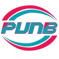 PUNB (Perbadanan Usahawan Nasional Bhd)