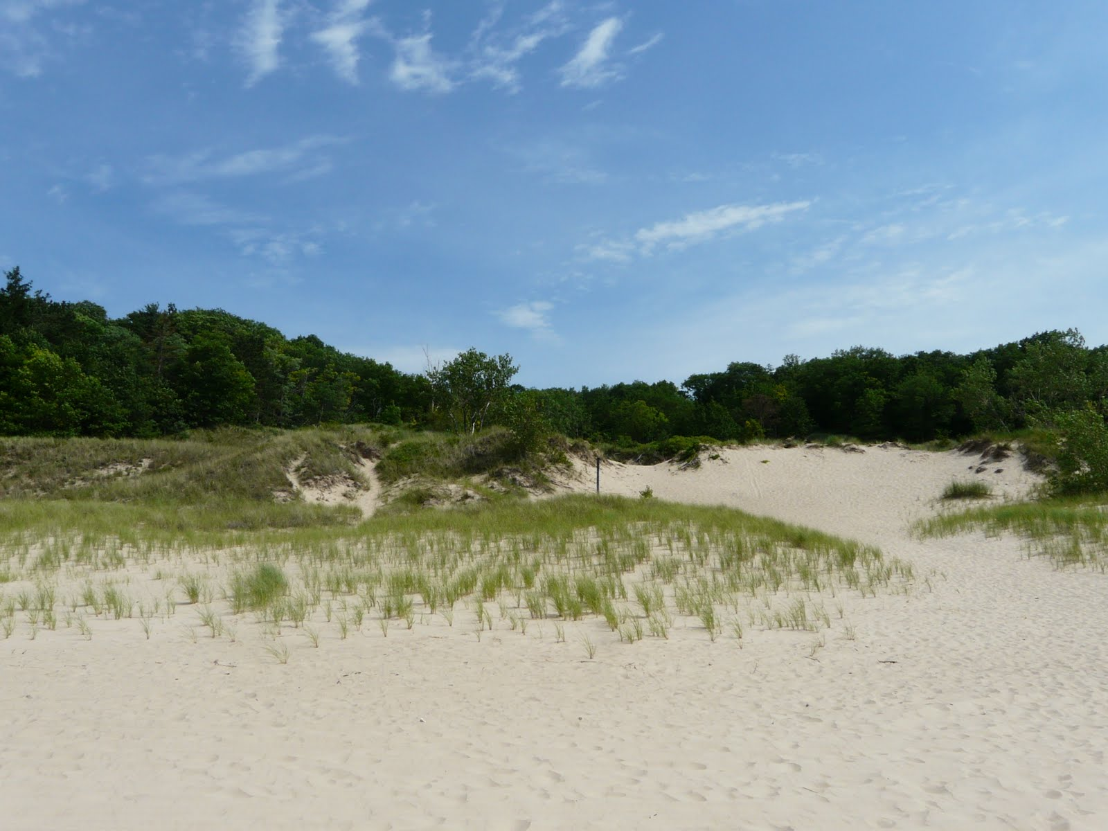 Indiana+dunes+camping+sites