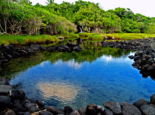 Hawaii Private Hot Pond