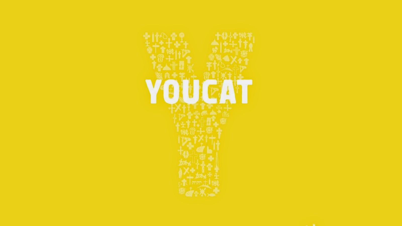 http://www.colegiocristorey.org/pastoral/clasedereligion/Youcat.pdf