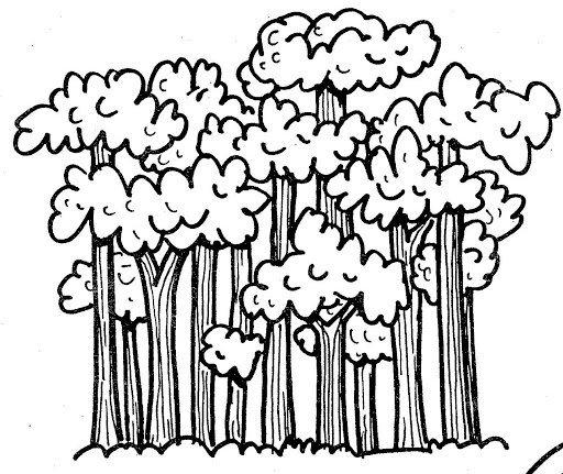 Dorable árboles De La Selva Para Colorear Adorno - Páginas Para ...