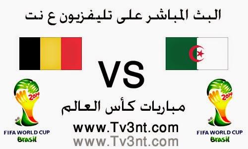 مشاهدة مباراة الجزائر وبلجيكا