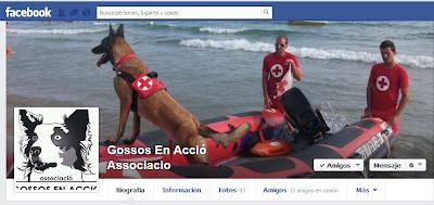 https://www.facebook.com/gossosenaccio.associacio