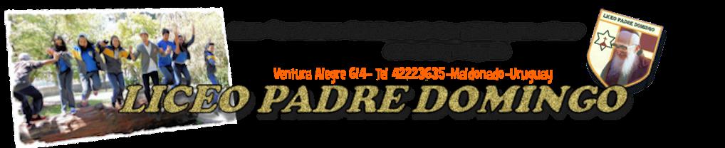Liceo Padre Domingo