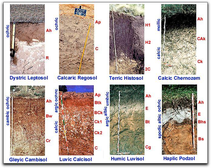 Muestreo de suelos tipos y caracter sticas generales for Tipos de terreno