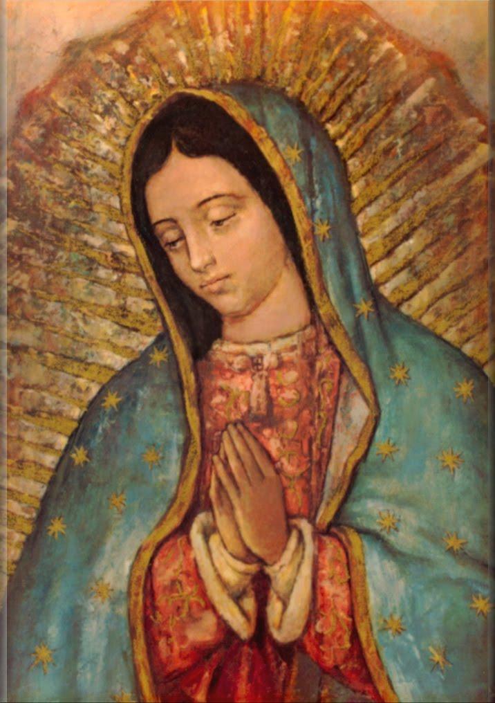 Mãe de Misericórdia, rogai por nós!