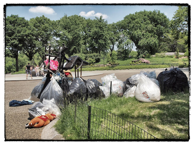 homeless, central park, new york city