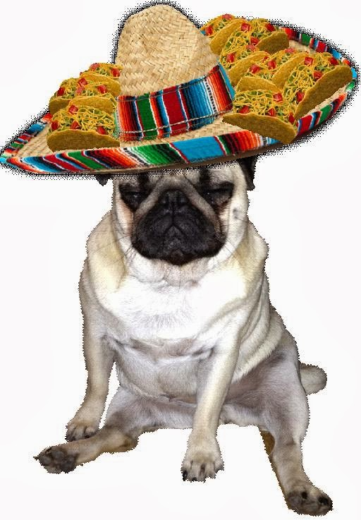 Image result for international taco day