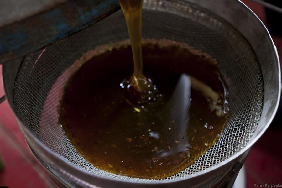 Пасечник сливает мед из медогонки.