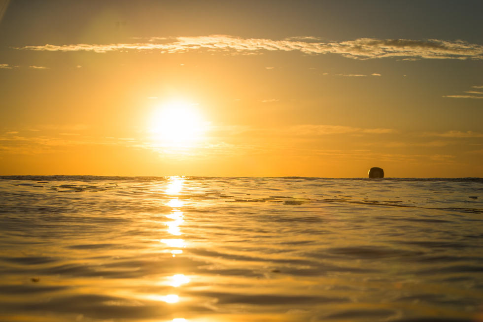 65 sunset Roxy Pro France Foto WSL Poullenot Aquashot