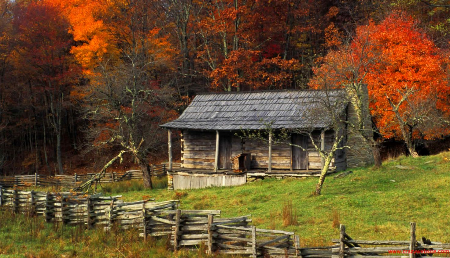Country Fall Wallpaper