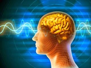 meningkatkan-daya-ingat-otak