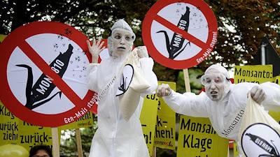 libera de responsabilidades legales a Monsanto