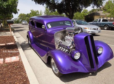 Purple Car Parked in Paso Robles in May, © B. Radisavljevic