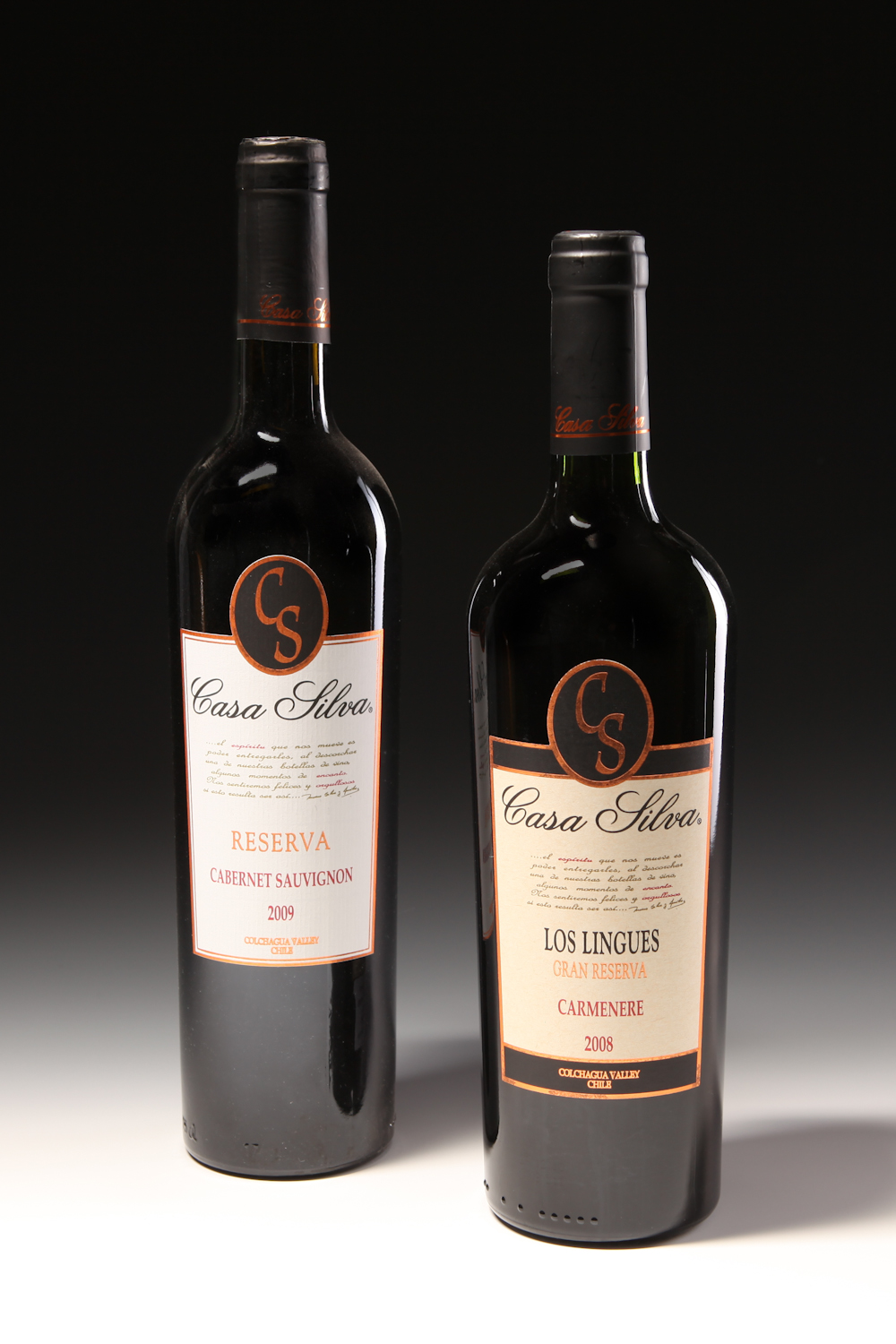 One Rich Wine Guy Vino Casa Silva Offers Exceptional