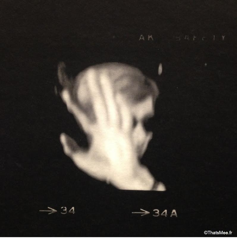 expo warhol unlimited portrait polaroid Warhol, warhol musee art moderne paris palais Tokyo 2015