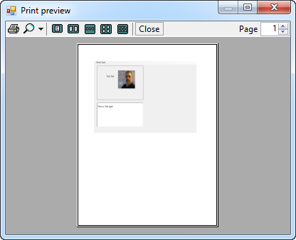 Run The Program And Now Click On Print Menu Item