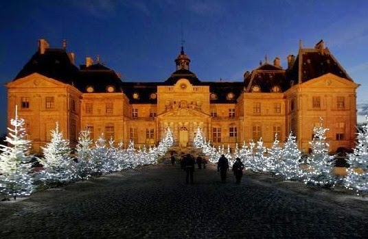 Sapins de Noël décorés  exposition à Vaux le Vicomte