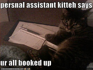 persnal assistant kitteh says ur all booked up