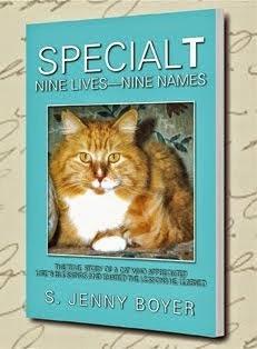 SpecialT