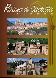 Folleto Interactivo Raíces de Castilla