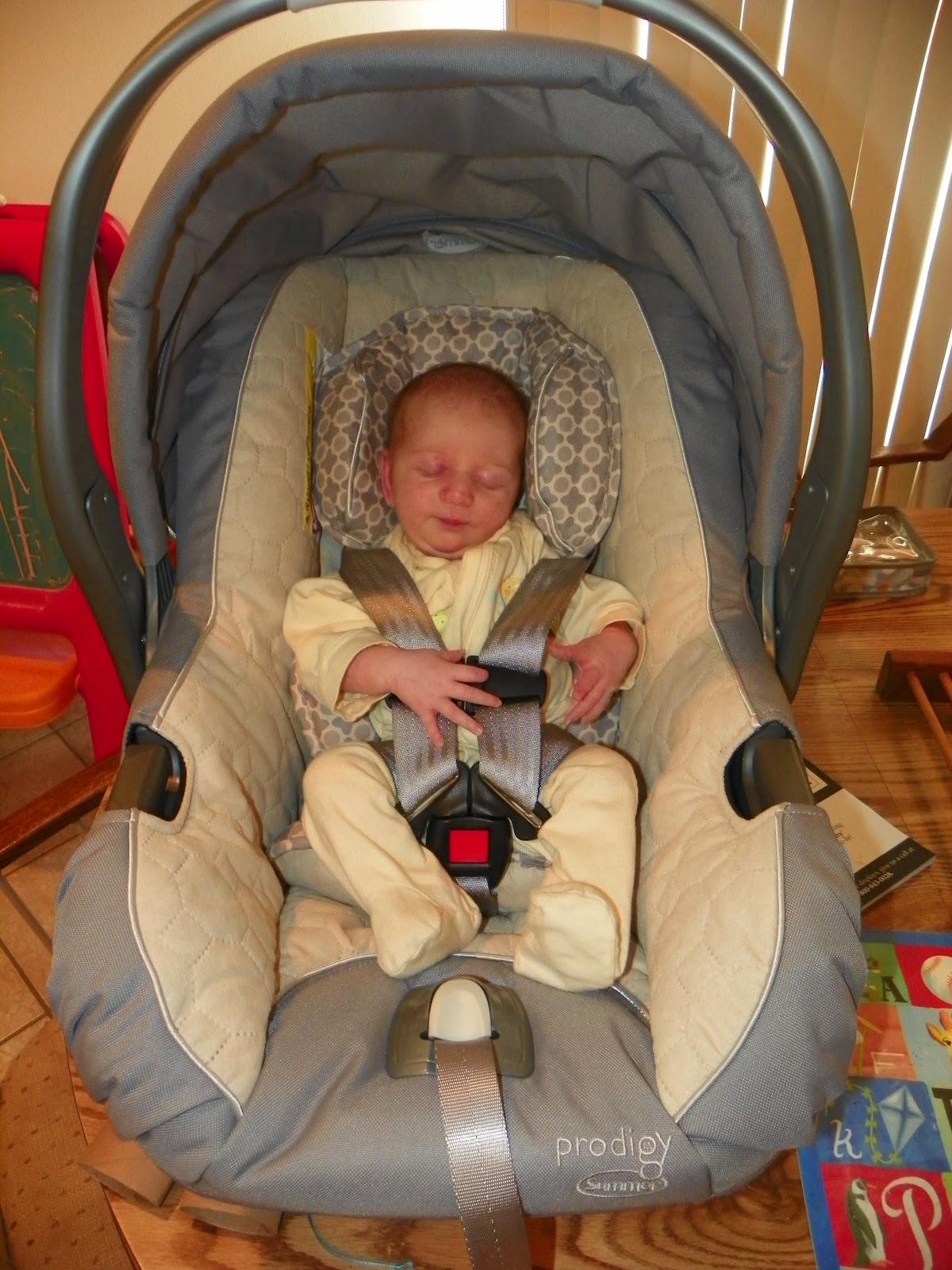 Summer Infant Prodigy Car Seat Review ~ The Review Stew