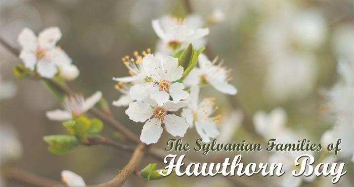 Hawthorn Bay