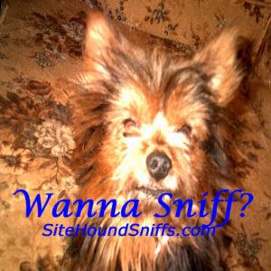 Wanna sniff?