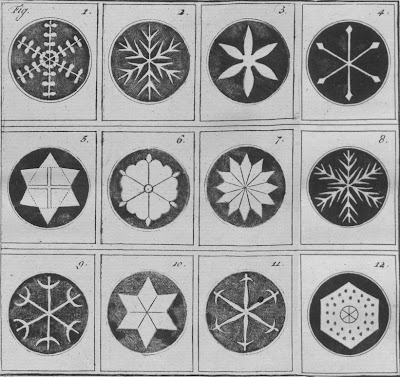 格致問答 雪の図  マルチネット  Katechismus der natuur: Sneeuwfiguren: J. F. Martinet