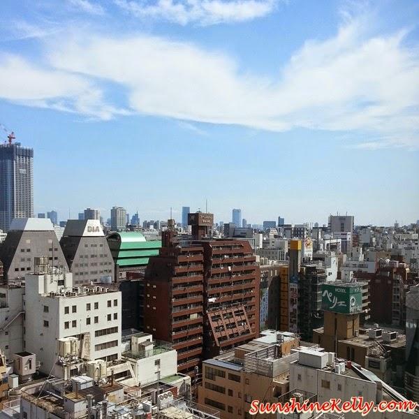 Tokyo, Japan, sky view, happening, japanese