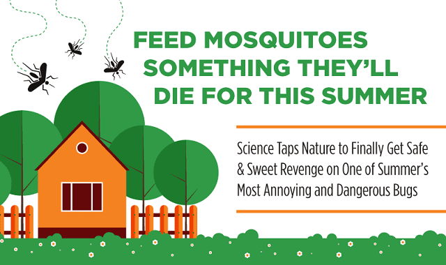 Feed Mosquitoes Something They'll Die For This Summer