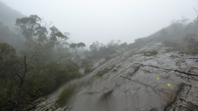 rain and mist on the mount difficult range track