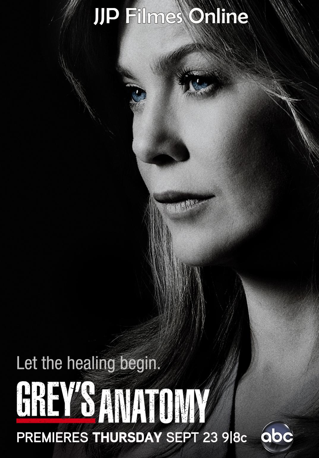 Assistir Greys Anatomy Todas As Temporadas Dublado Legendado