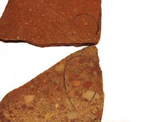 Michigan Stones Puddingstone and Copper Red Jasper