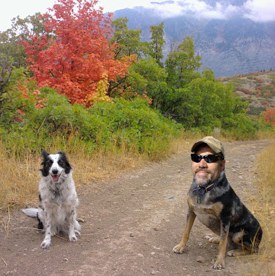 Pic of Pooch the dog and Will Terry, the artist. Will's face is photo shopped onto a dogs body.