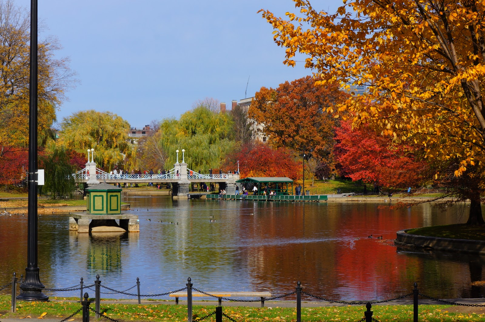 Brad\'S Photo Blog: Swan Pond in Boston Public Gardens